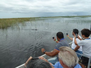 Everyone Taking Pictures of the Alligator. Click photo for full size.